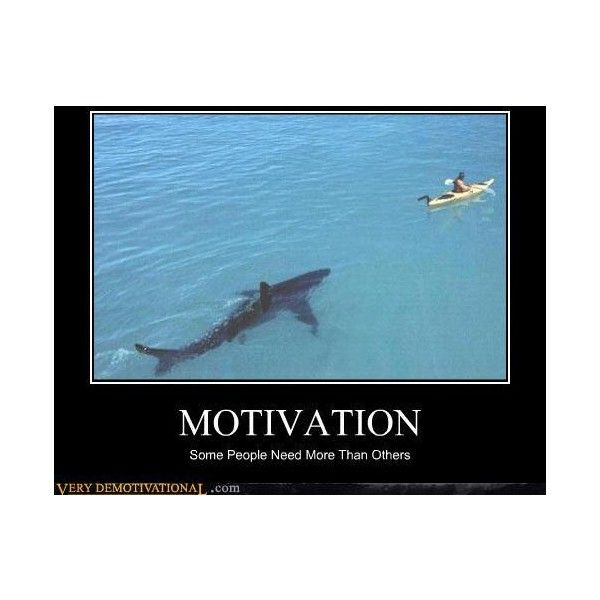 Very Demotivational - The Demotivational Posters Blog - Page 8 ❤ liked on Polyvore featuring funny, backgrounds, animals, black captions and demotivational poster