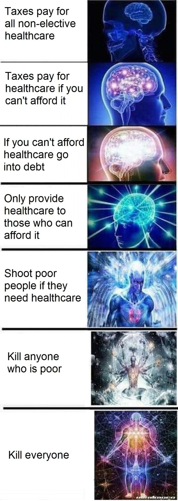 Expanding Intelligence Meme Cat