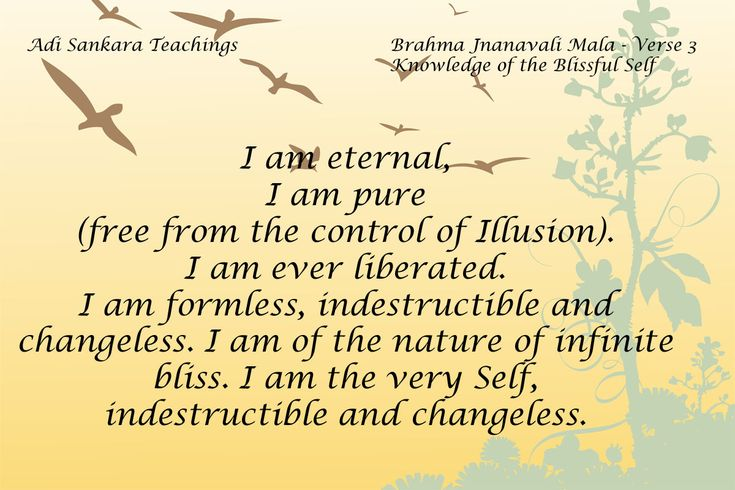 Brahma Jnanavali Quote 3 Adi Sankara Teachings Brahma Jnanavali Mala - Verse 3 Knowledge of the Blissful Self I am eternal, I am pure (free from the control