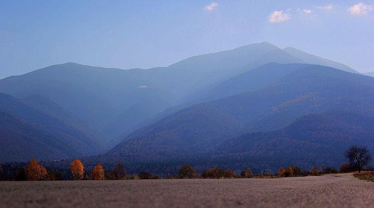 Sambata de Sus, Fagaras Mountains, Romania  (Fall 2013)