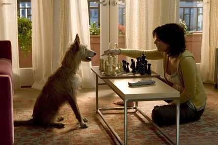 The Lake House, Sandra Bullock, Keanu Reeves , Alejandro Agresti  via   « Catholic Sensibility
