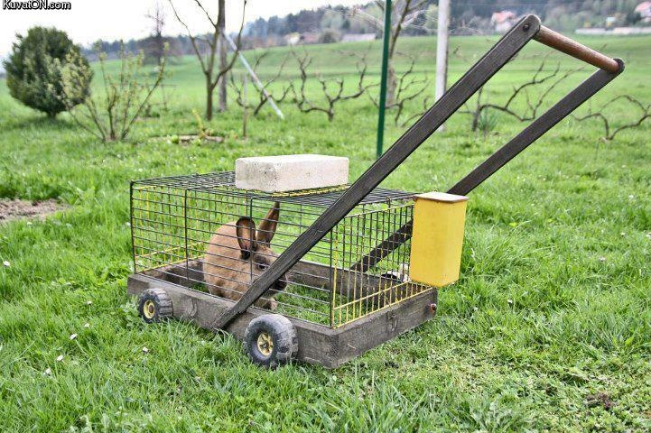 Well, can't get much greener than this... (Also, I totally had something like this for my guinea pig, sans handle.)