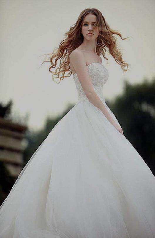 Muslim Wedding Dresses 2012