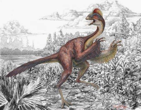 Científicos de los museos Carnegie y Smithsonian, y de la Universidad de Utah presentan el descubrimiento y descripción de una nueva especie...