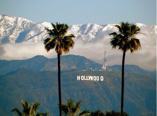 Hollywood Los Angeles California LoveHollywood CaliforniaHollywood FloridaCalifornia Palm TreesHollywood SignLos