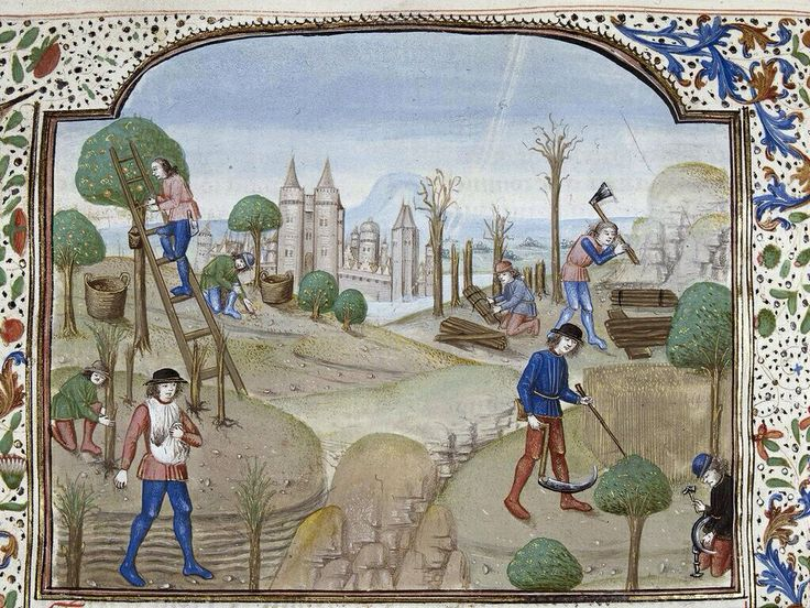Busy image of fruit gatherers and workers in BLMedieval Royal 15 E II