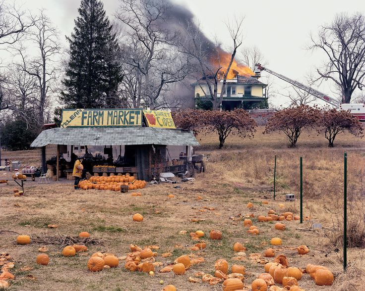 Happy Halloween (via MoMA | The Collection | Joel Sternfeld. McLean, Virginia. December 4, 1978)