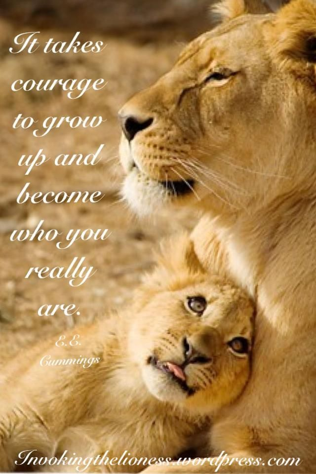 Lioness Quotes Who you really are
