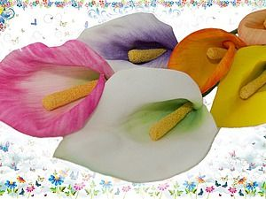 Мастер-класс: каллы из фоамирана | Ярмарка Мастеров - ручная работа, handmade