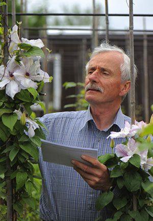 Dr Marczyński obserwujący siewki
