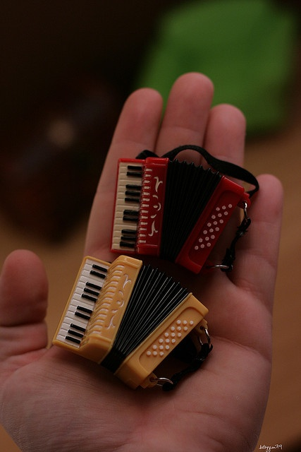 Accordions. OMG ,I have to have an accordion somewhere in the doll house.My father could play an accordion.I miss the old bird.