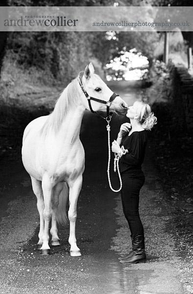 Equine portrait Cheshire, horse portrait Cheshire, Equine portrait Lancashire, horse portrait Lancashire,