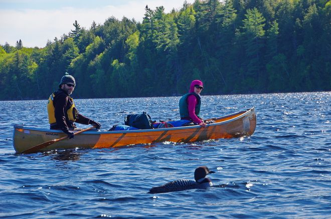 Canoeing in late May in Algonquin Park