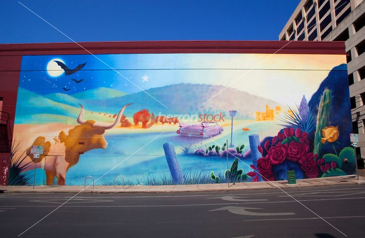 23 best images about austin street art iconic murals for Austin mural wall