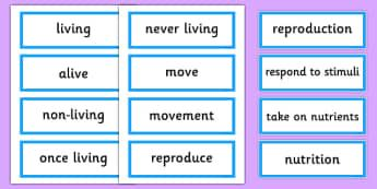 Living and Non-Living Vocabulary Word Cards - australia, Science, Year 3, Living, Non-Living, Characteristics, Word Cards, Vocabulary, Australian Curriculum