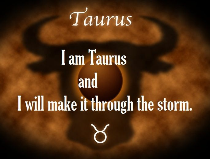 Belonging to the sign of practicality and possessions, Taurus individuals tend to be very patient, practical and dedicated. If you have encountered a Taurus, you will have noticed their passion, endurance and sincerity even in the smallest of things. And…