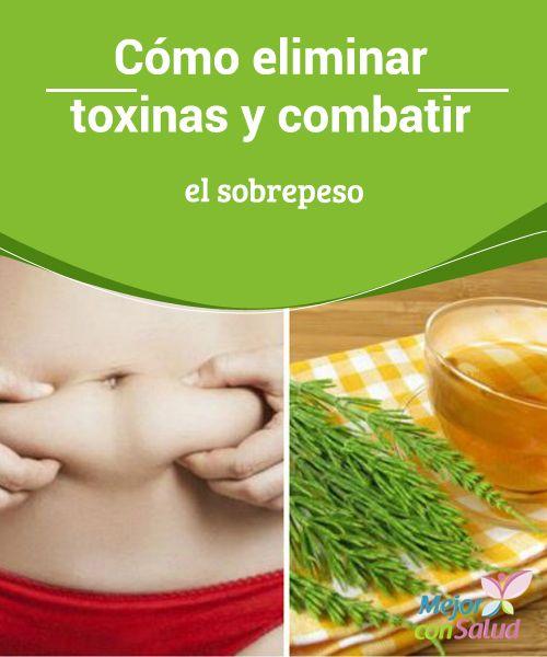Cómo eliminar toxinas y combatir el sobrepeso   Te compartimos algunos remedios depurativos para eliminar las toxinas y combatir el sobrepeso. ¡No te lo pierdas!