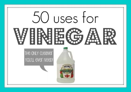 White Vinegar - the only cleaner you'll ever need. It kills 99% of bacterias, 82% of molds and more than 80% of viruses. You can use it with tea tree oil, hydrogen peroxide, or baking soda to increase its antibacterial effectiveness. WARNING: hydrogen peroxide and vinegar should be applied separately, not mixed together and NEVER mix bleach with vinegar — it creates a dangerous chemical reaction.