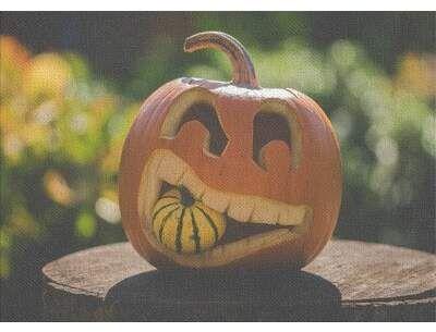 East Urban Home Halloween Cotton Green Area Rug Pumpkin Carving Halloween Pumpkin Carving Stencils Halloween Pumpkins