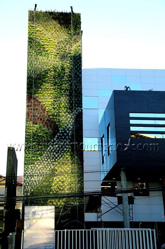 Ecosistema vertical en la Confederación de Empresarios Privados de Cochabamba, Bolivia