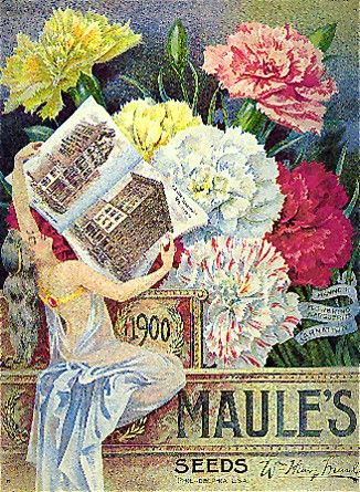 17 Best 1000 images about VINTAGE SEED CATALOGS on Pinterest Plant