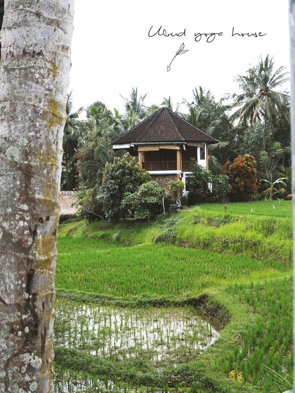 Organiser Une Retraite de Yoga à Bali à Petit Budget #Indonesia #Bali #Ubud #Yoga #Travels