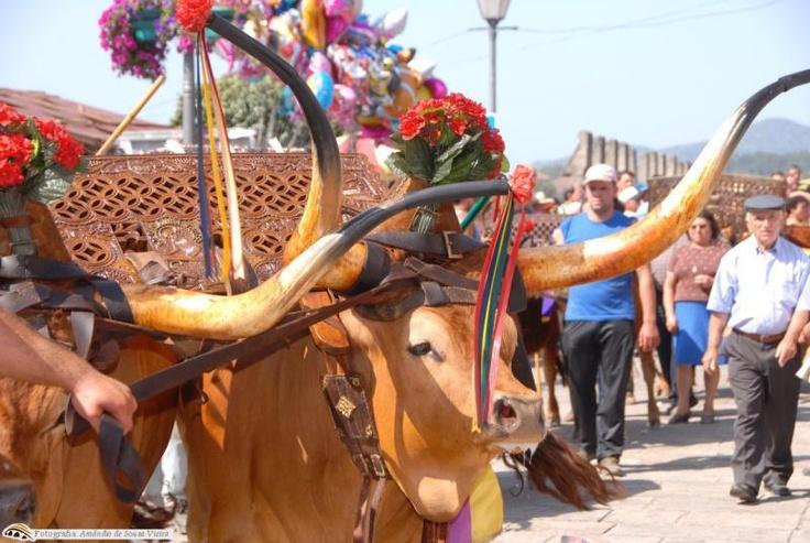 Feiras Novas de Ponte de Lima de 8 a 10 de setembro 2012 são a maior atractividade cultural de Ponte de Lima, preservando os valores da ruralidade, com a alegria das bandas de música, dos cantares ao desafio, das tocatas, das concertinas e das danças tradicionais do seu folclore. Feiras Novas de Ponte de Lima de 8 a 10 de setembro 2012  http://escapadelas.com/artigo/nao-perca-feiras-novas-festas-concelho-ponte-lima-8-10-setembro-2012  Foto: Município de Ponte de Lima / Armado de Sousa Vieira