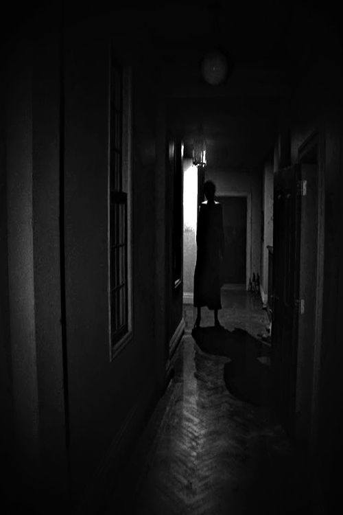 P.T. Silent Hills / Video: https://vimeo.com/104084269