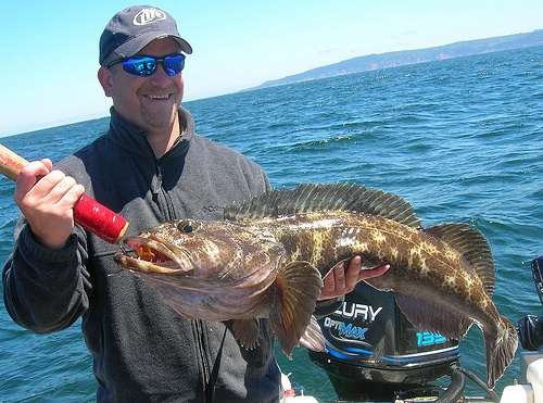 1000 images about ling cod on pinterest posts san juan for Oregon coast fishing