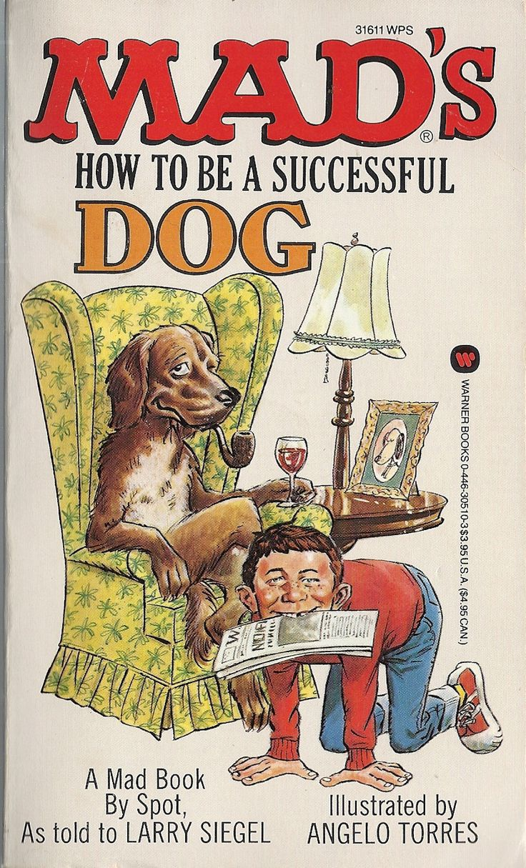magazine cover template publisher - 1463 best images about mad magazine on pinterest cartoon