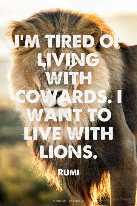 I'm tired of living with cowards  I want to live with lions