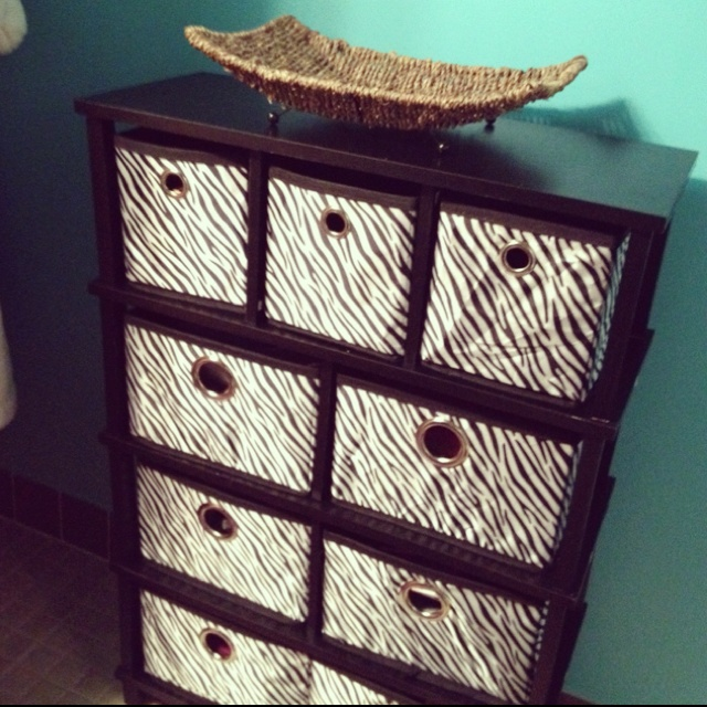 Zebra print bathroom organizer. Love the wall color you can see.