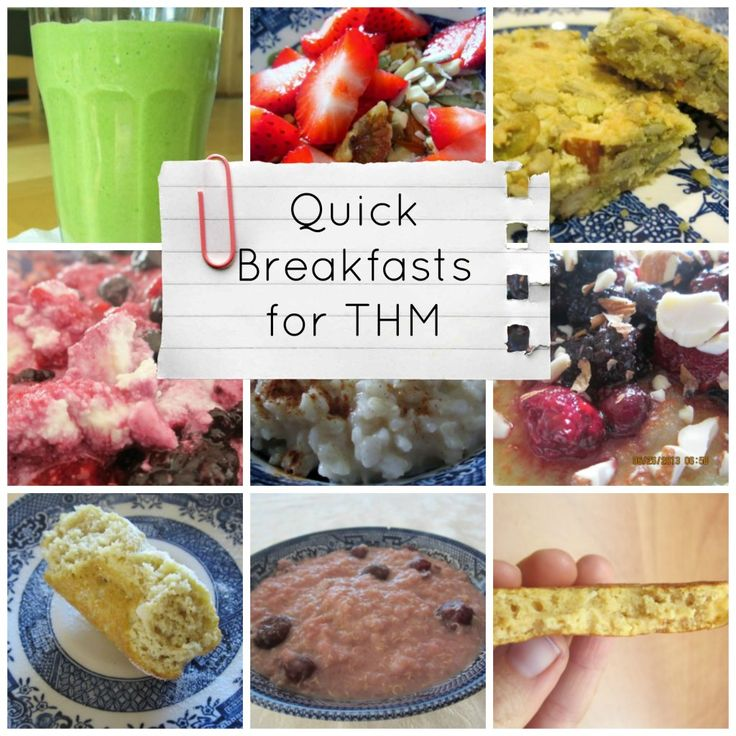 Quick Breakfasts for Trim Healthy Mamas {Low Carb, Grain Free, Dairy Free, Gluten Free, and Egg Free Options}   Counting All Joy.Com