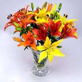 Send Lilies Online
