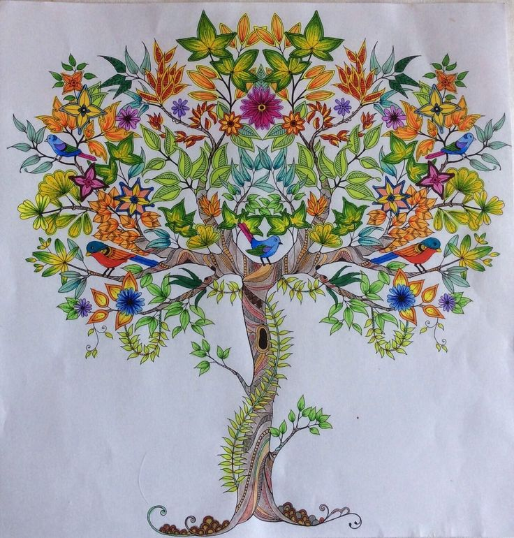 Image From 3bpblogspot KF6XGQ Secret Garden Coloring BookThe