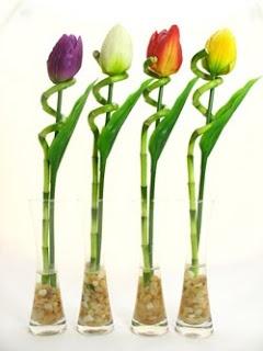 Christina <3 Jon: More Lucky Bamboo Ideas
