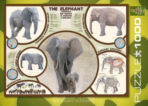 Elephant 1000 Piece Puzzle | Wildlife | CALENDARS.COM - $14.99 This educative puzzle includes information about elephant species, their anatomy and their habits. Learn and have fun!
