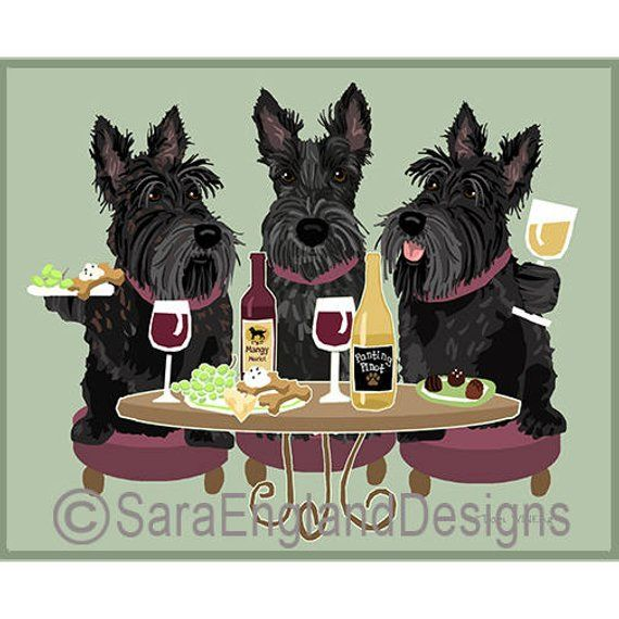 Dogs Wineing Scottish Terrier Black Shotlandskij Terer Terer Skotch Terery