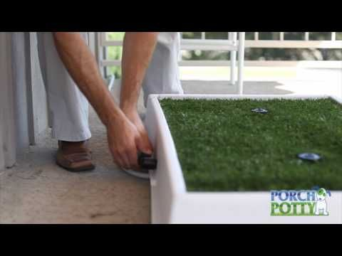 Porch Potty Is The Dog Potty That Cleans Itself Dog