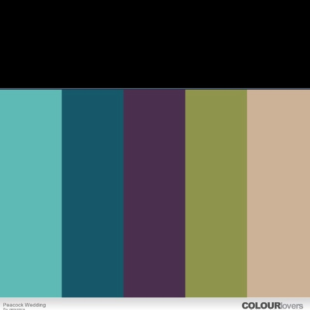 25 Best Ideas About Teal Color Schemes On Pinterest: Best 25+ Peacock Color Scheme Ideas On Pinterest