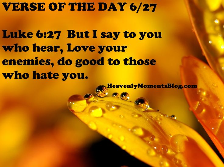 VERSE OF THE DAY 6/27  Luke 6:27  But I say to you who hear, Love your enemies, do good to those who hate you.  #Bibleverse #verseoftheday #Bible #scripture #Biblequote #Christian #Christianity #Christ #Jesus #JesusChrist #God #Lord #Pray #Prayer #enemies #hate #love #Christianwoman