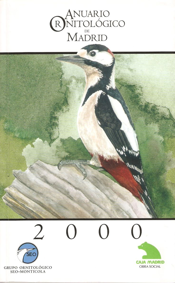 90 best ..Pico picapinos/Great spotted woodpecker (Dendrocopos major ...