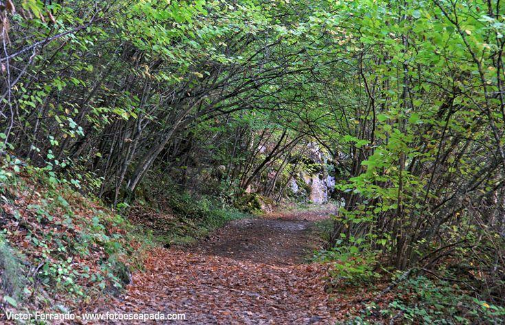 Ruta por la Hoz de Beteta - Cuenca