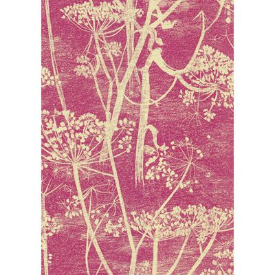 Cow Parsley Cream/Pink 66/7052