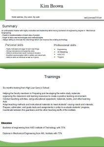 cv resume format for freshers