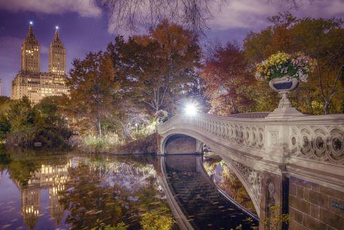 Bow Bridge, Central Park by Alexander Marte Reyes | New York City Feelings | Bloglovin'