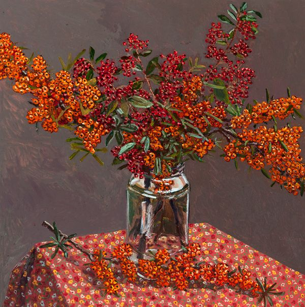 Pycantha, Cotoneaster  2014 oil on board 80 x 80cm by Lucy Cullinton
