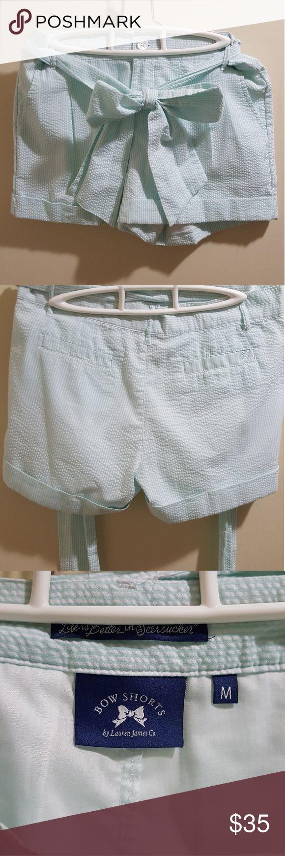 Lauren James Seersucker Shorts Mint green seersucker shorts EUC No trades Lauren James Shorts