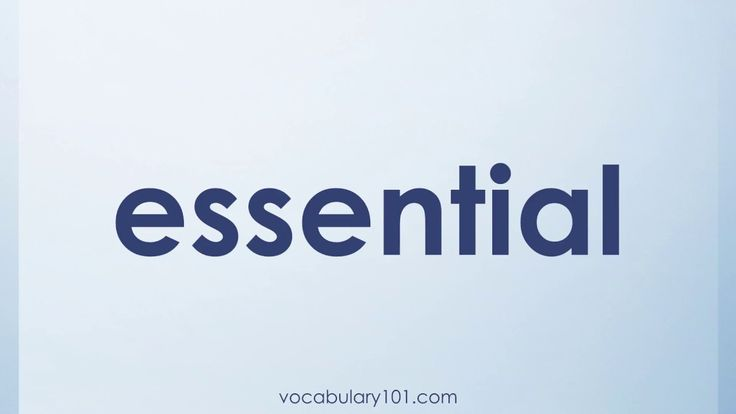 essential Meaning and Example Sentence | Learn English Vocabulary Word with Definition