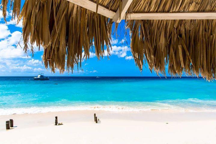 Goedkope vluchten naar Curaçao nu slechts €480 retour!   http://www.vakantiepiraten.nl/?p=1675